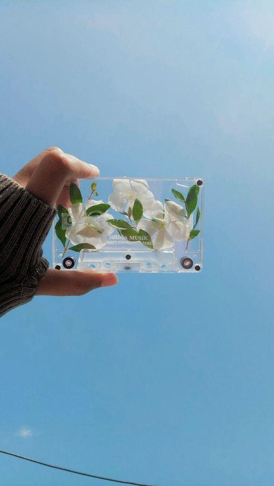 ✨ 唯美系:【韩风WALLPAPER · 花卉桌布】INS风意境照片