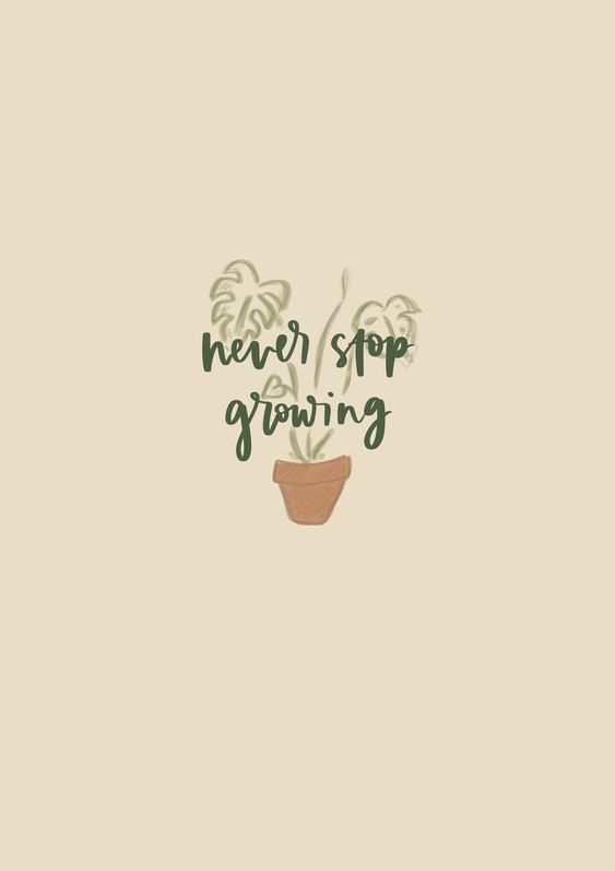 Never stop growing. 心若向阳,一路有光;一起努力向阳生长吧!