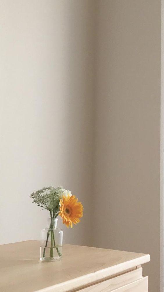 ✨ 治愈系手机壁纸Wallpaper · 韩风实景 「你的好运,藏在了你的努力里 ❤️ 努力生活,就会发现生活藏起来的糖唷!」